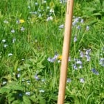 Buy De Wit Long Handled Crocus & Snowdrop Bulb Planter Online
