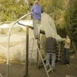 The new poly tunnel